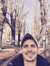 Dog walker Southbank Melbourne City Preview
