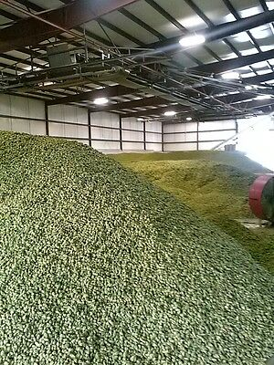 Hop Bundle: Cascade plus, Bundle 2 pounds total. Your Choice!