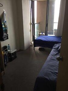 DOUBLE ROOM FOR RENT Haymarket Inner Sydney Preview