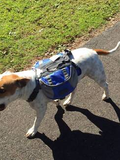 DOG BACK PACK SADDLE BACKPACK HIKING SIZE S M L CAN POST AUS WIDE
