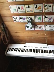 Roland FP-4 Stage Piano
