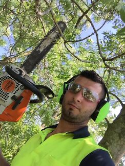 Moe's rubbish removal  Tree cutting  Lawnmowing services      Coburg Moreland Area Preview