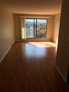 1 bedroom condo for rent Available 1st of April