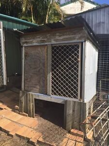 Chickens, Coop and Fencing Kuluin Maroochydore Area Preview