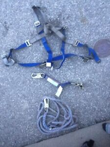 Safety rope, harness and lanyard