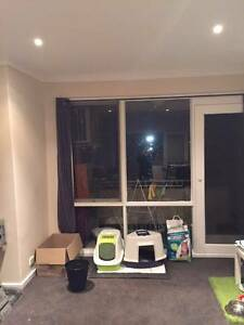 Ormond near station one room for rent Ormond Glen Eira Area Preview