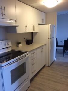 RARE: Bachelor Apartment Available for March 1!