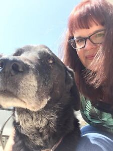 Pet sitter service_Innisfail,Bowden,Penhold and Olds