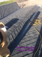 ROOFING& Repair@ BEST PRICE