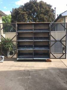 Breeding Box for Pigeons for Sale
