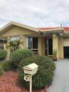 Share house in Franklin Franklin Gungahlin Area Preview