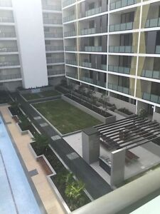 Homebush new apartment one double room for rent . North Strathfield Canada Bay Area Preview