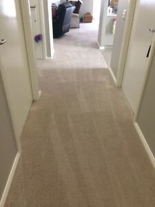 CARPET CLEANING VILLAWOOD 3rm $70 or 5rm $100 Villawood Bankstown Area Preview