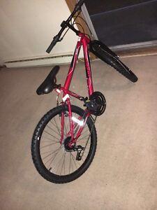 brand new mountain bike with free lock