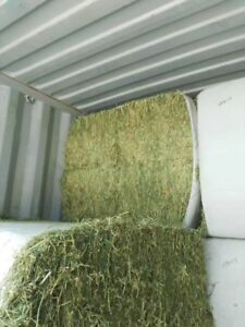 Wanted: Straight Alfalfa Big Bales