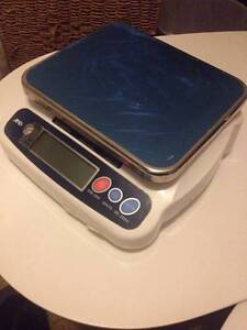 Electronic Scale Maroubra Eastern Suburbs Preview