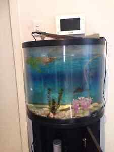 AQUARIUM for sale!!! Only $99 Panania Bankstown Area Preview