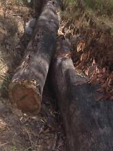 FREE firewood Reedy Creek Gold Coast South Preview