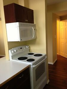 2 bedroom basement suite, laundry and utilities included