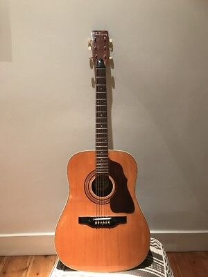 Shaftesbury Rodeo 6 vintage acoustic guitar