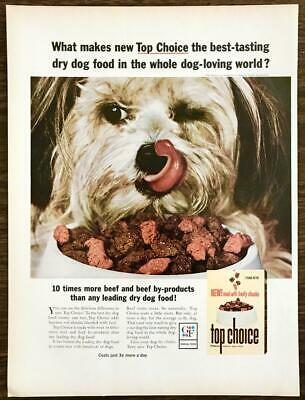 1964 Top Choice Dog Food Print Ad Best Tasting in the Whole Dog Loving