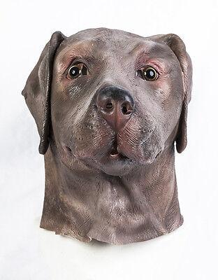 Schoko Labrador Maske Braun Hund Kostüm Tier Hunde Realistische Halloween