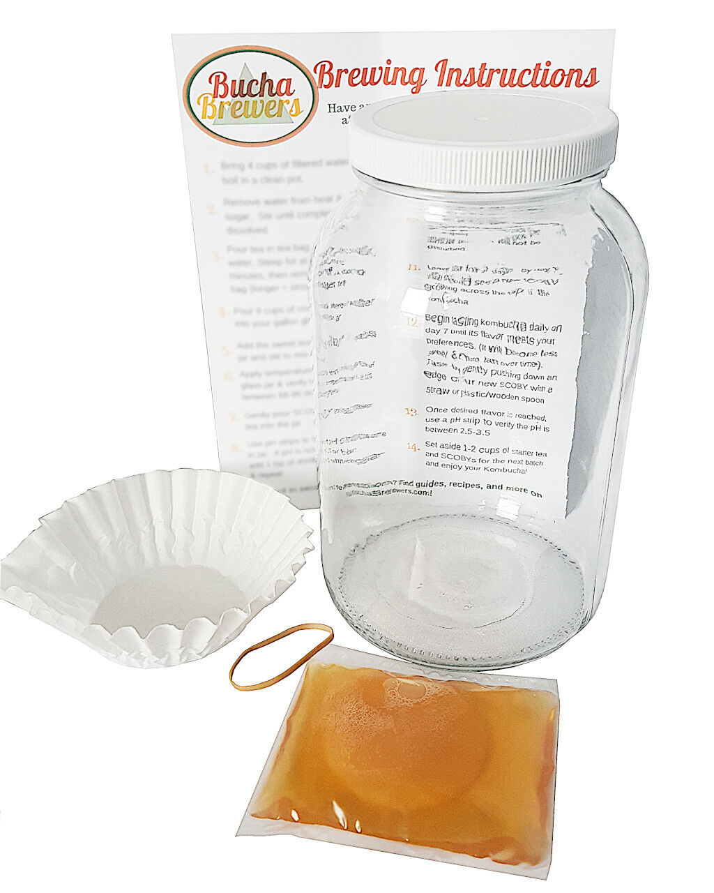Kombucha Starter Kit Kombucha Kit - Gallon Glass Jar, SCOBY,