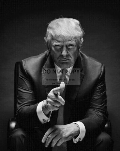 DONALD J. TRUMP - 45TH PRESIDENT OF THE UNITED STATES - 8X10 PHOTO (SP378)