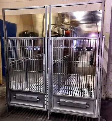 Stainless Steel Dog Kennel Cage 60 Deep X 38 Wide - Bank Of 5