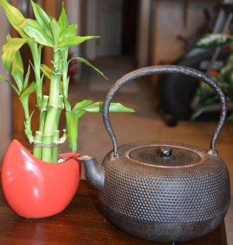 Japanese Antique Old Cast Iron Teapot KANJI Made in Japan Tetsubin Chagama