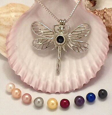 Dragonfly Cage Pendant Ss Necklace Wish Akoya Pearl Oyster Gift Packed Set