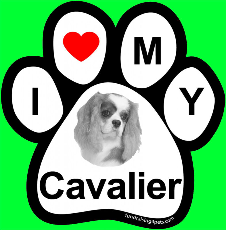 I LOVE  3 MY CAVALIER - PAW MAGNET,4 Dog Cat Pet Rescue Charity