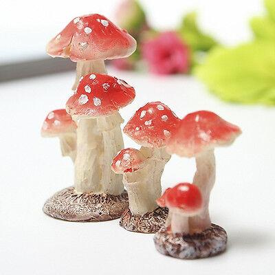 Miniature Mushroom Toadstool Fairy Garden Terrarium Figurine Dollhouse DIY Props (Fairy Garden Terrarium)