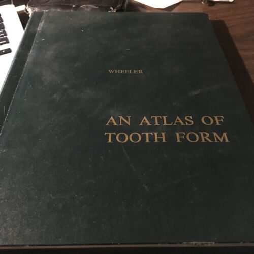 An Atlas of Tooth Form Russel C Wheeler DDS Vtg 1969