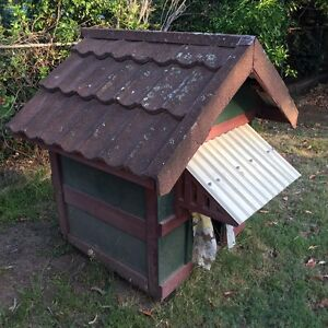 Free Doghouse Free to a good home! Baulkham Hills The Hills District Preview