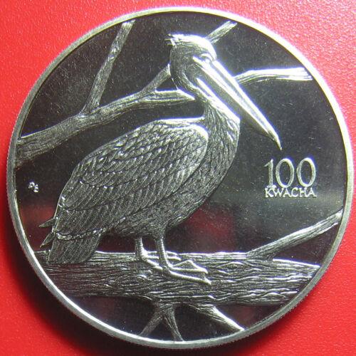 1998 ZAMBIA 100 KWACHA PELICAN BIRD AFRICAN WILDLIFE RARE COIN CU-NI (no silver)