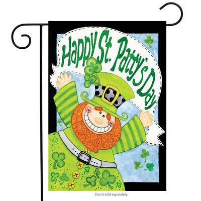 happy leprechaun patrick day garden