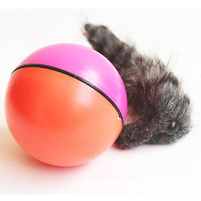 Puppy Dog Cat Weasel Motorized Rolling Ball Pet Appears Jump Training Moving Toy