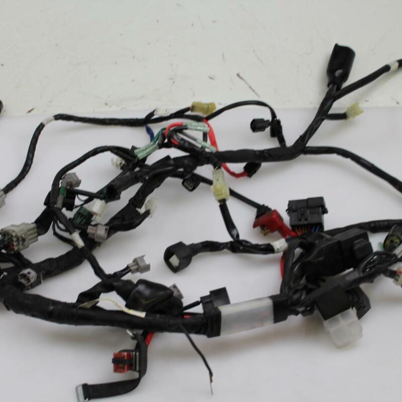 Yamaha Engine Wiring Harnes