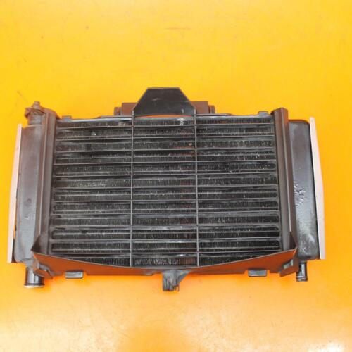 04-06 YAMAHA FZ6 FZ600 OEM ENGINE RADIATOR MOTOR COOLER COOLING RADIATER