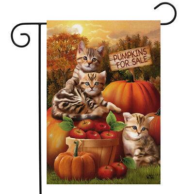 Fall Kittens Pumpkins Garden Flag Apple Basket Autumn 12.5