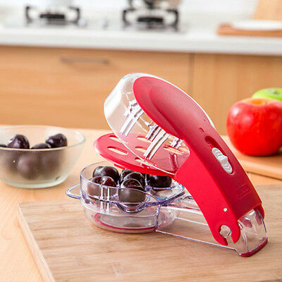 Fruit Core Seeds Remover Multi Cherry Pitter Extractor 6 Capacity Press Olives