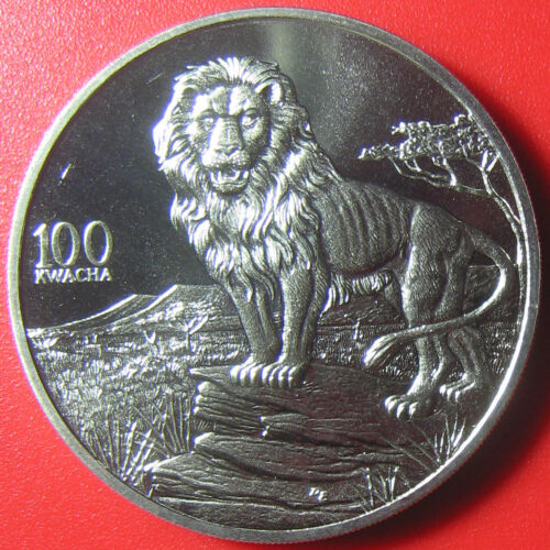 1998 ZAMBIA 100 KWACHA LION AFRICAN WILDLIFE RARE CROWN CU-NI 38.6mm (no silver)