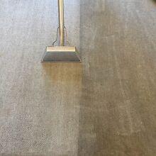 3 rooms carpet clean $69 pest control $69 Daisy Hill Logan Area Preview