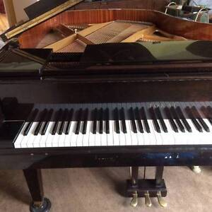Tokai baby grand piano Blacktown Blacktown Area Preview