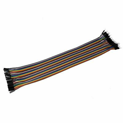 60cm - 40 Pin Ribbon Cable Wdupont Connectors Male To Female