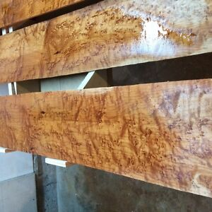 birds eye maple  guitar sides