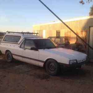 ford xf falcon ute Echuca Campaspe Area Preview