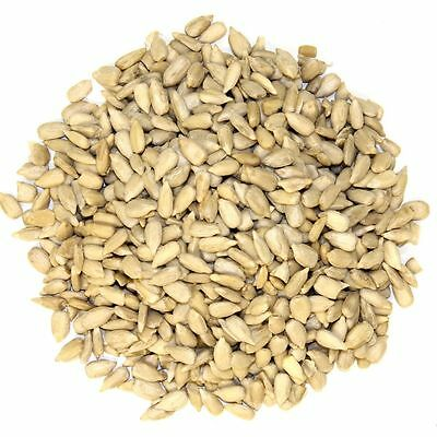 Sunflower Hearts (Bakery Grade) 1.5Kg Wild Birds Dehulled Seed Kernels Bird Food