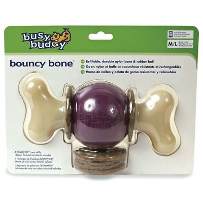 Petsafe Busy Buddy Hüpf Knochen Gummi Hunde Kauen Leckerli Spielzeug Rohhaut